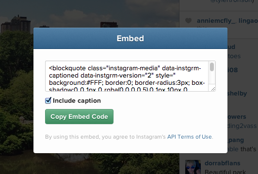 instagram descriere poza in embed