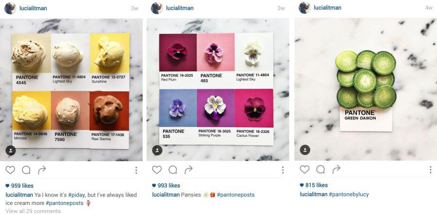 Mâncare (și plante) organizate pe culori Pantone