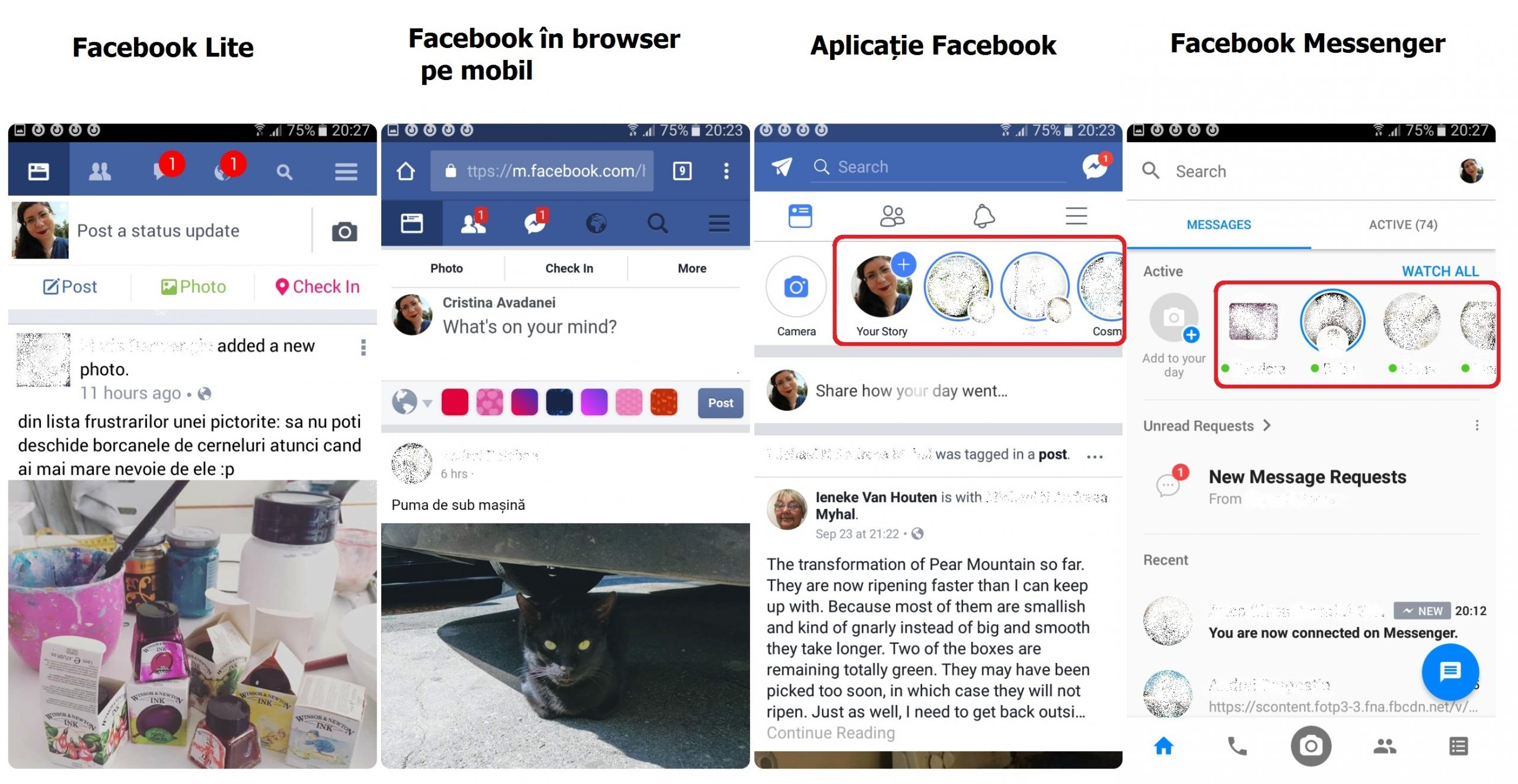 facebook story web